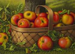 An Apple a Day by Katherine Crouch