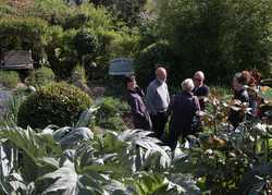 Open Gardens Weekends & Chelsea Flower Show