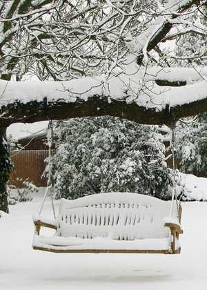 Garden Swing Seat Hanging From Tree in Snow