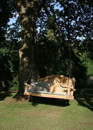 Swing Seat in Shade Hanging From Tree