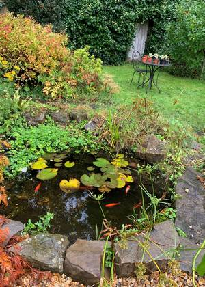 The pond with fish and a table and chairs of lawn in the background