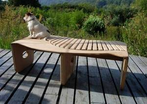 Dog perched on a garden bench