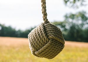 Large Rope Ball Swing