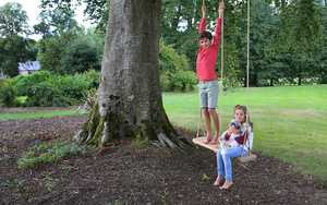 Double Rope Swing Standing Up