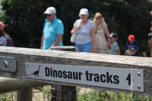 Dinosaur Footprints Walks at Keates Quarry in Purbeck