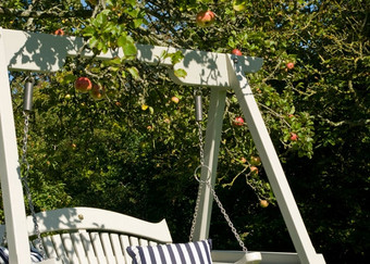 Harmony Swing Seat Apple Tree