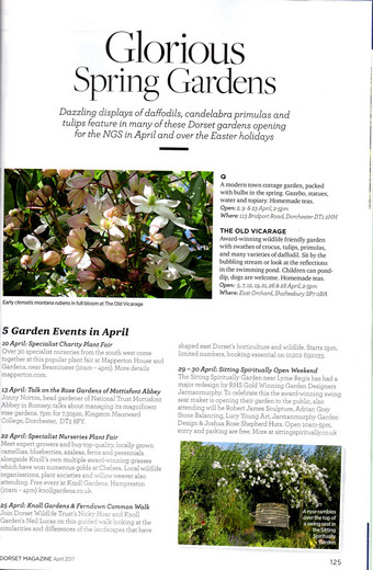 Dorset Magazine, our Open Weekend April 2014