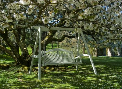 Garden Swing Seat: Harmony in Painted Pine