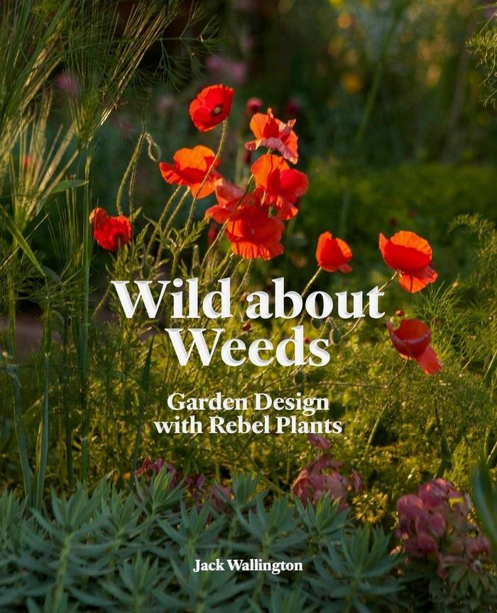 The front cover of Wild about Weeds