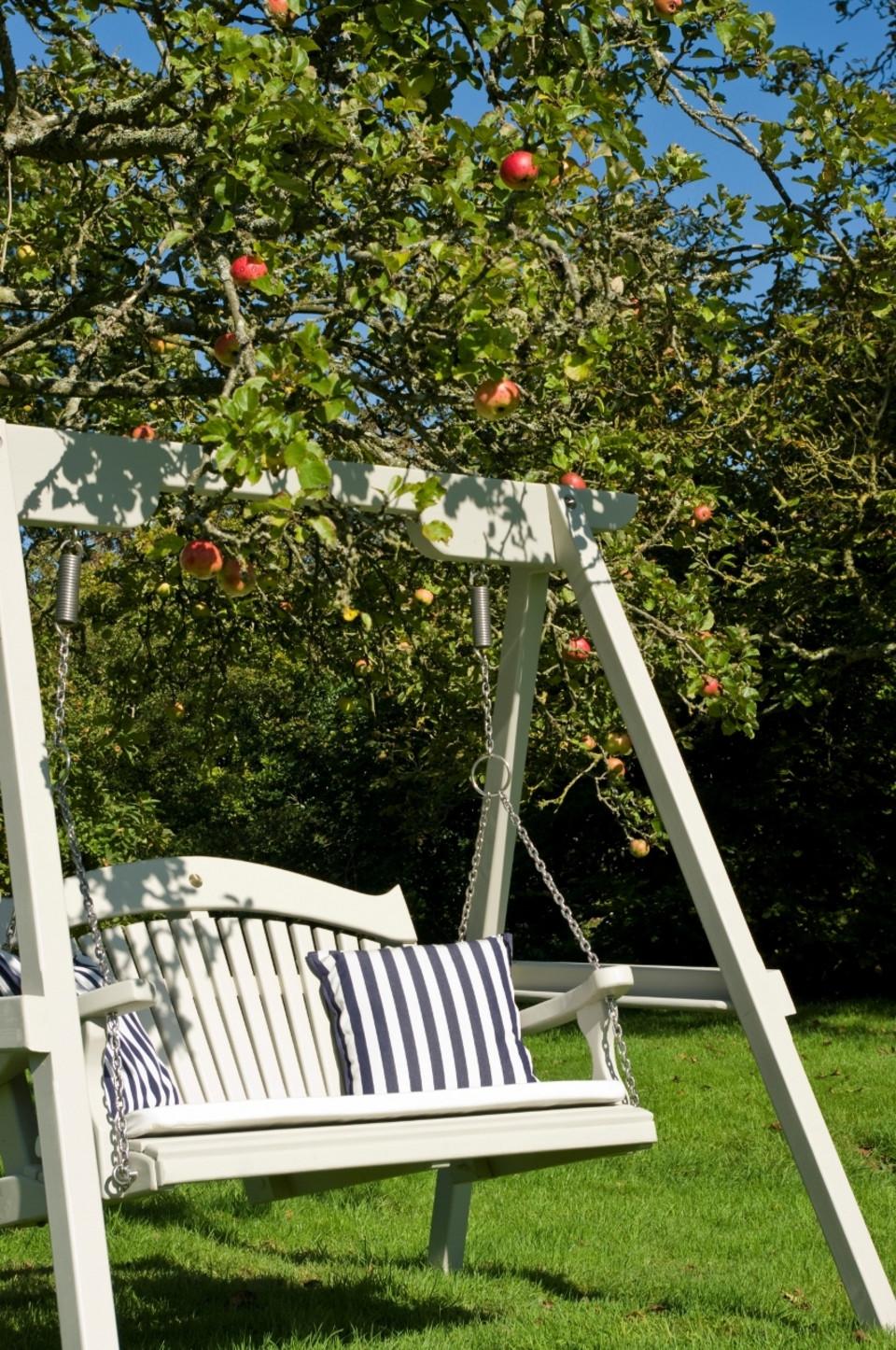 Garden Swing Seat The Harmony Range In Pine Buy Now